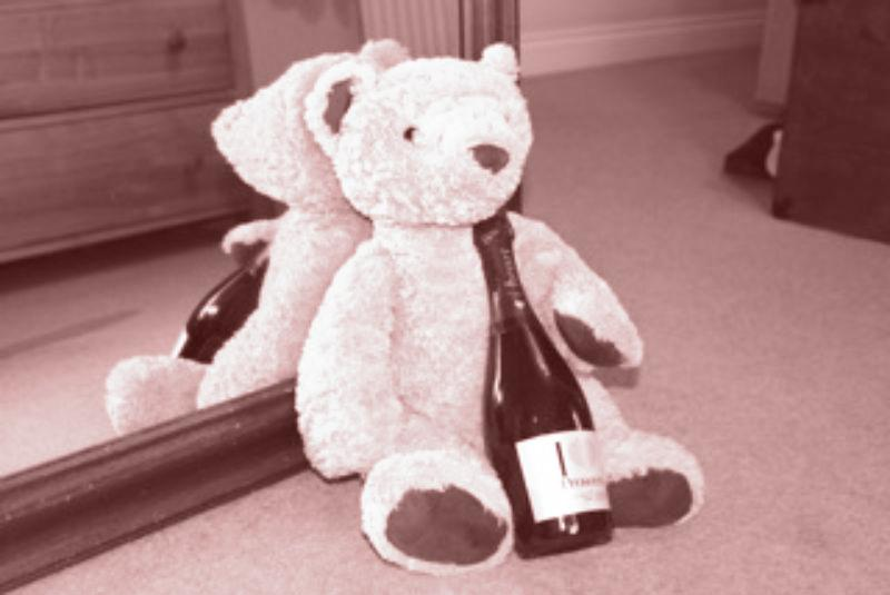 The class bear with wine