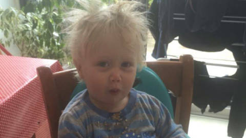 Five Ways Boris Is EXACTLY Like My Toddler