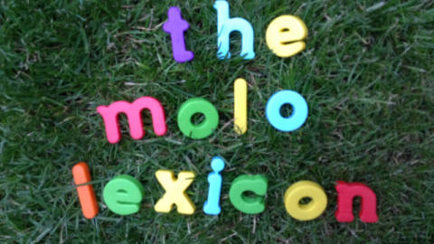The MOLO Lexicon