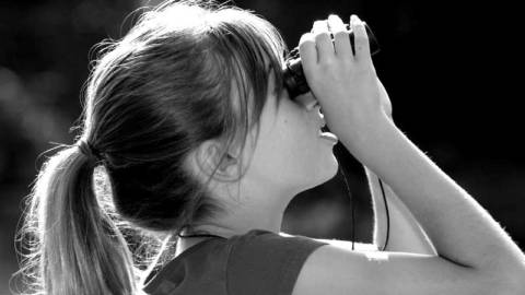Birdwatching: Science for Kids