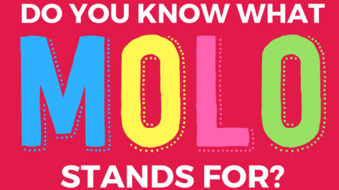 Why MOLO is so much MORE than 'Mums of Little Ones'