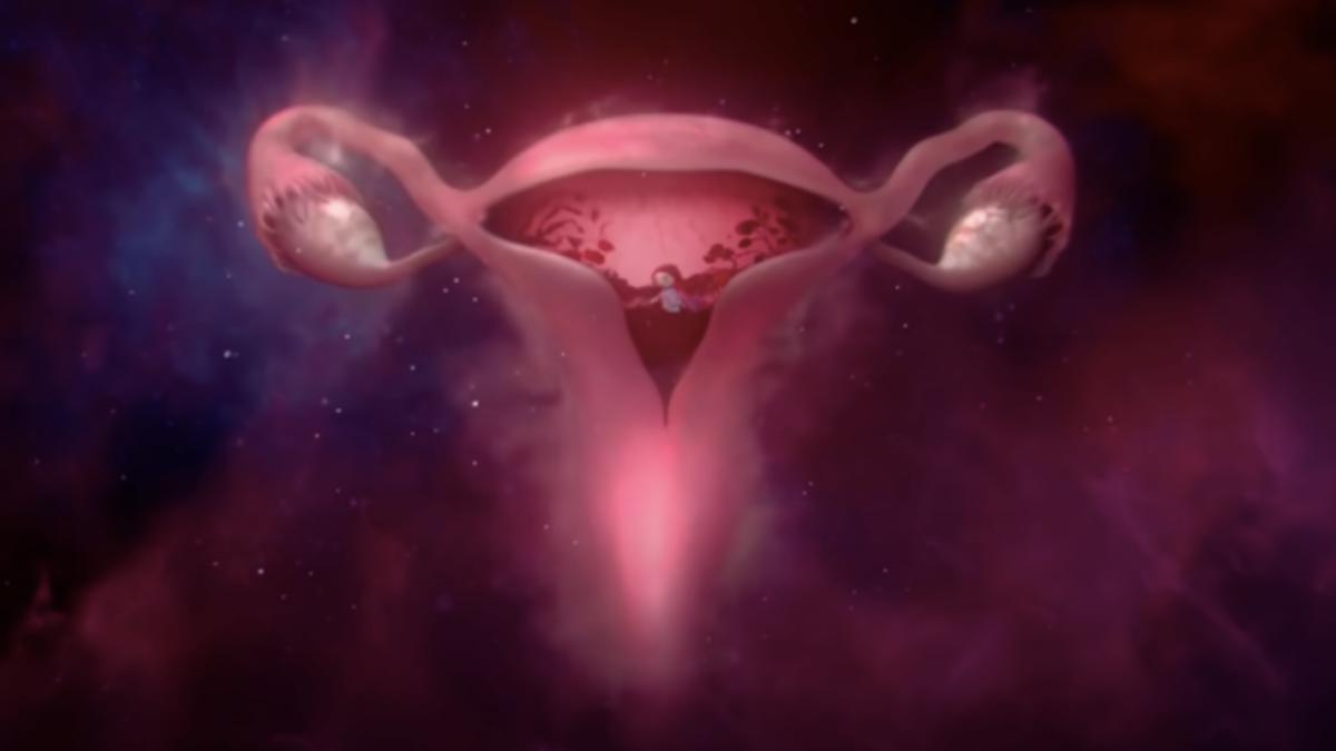 Bodyform #WombStories Advert Periods